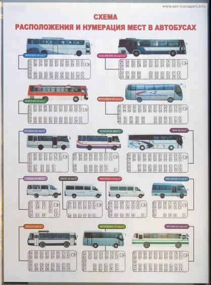 места в автобусе схема — места